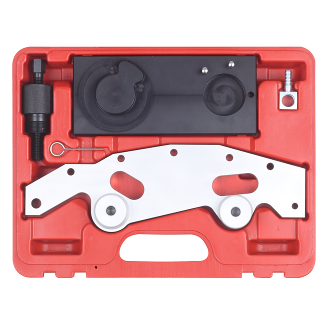 Big Red BMW Double VANOS Camshaft Alignment Tool